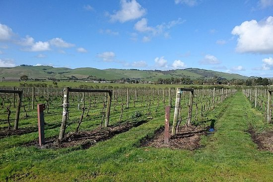 Visite de Phillip Island Wine Experience
