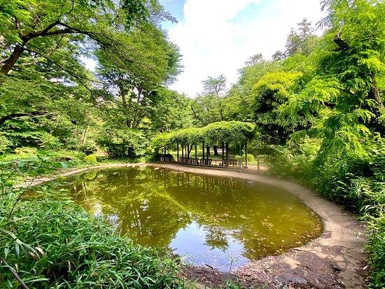 Kurogane Park