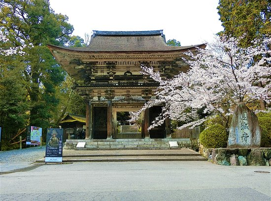 Mii-dera Temple Daimon