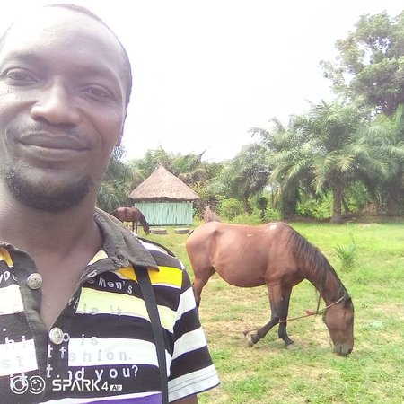 Kisangani, Democratische Republiek Congo: Conkim Lodge offre aux visiteurs la possibilité de faire des promenades à cheval ou en voiturette de golf.