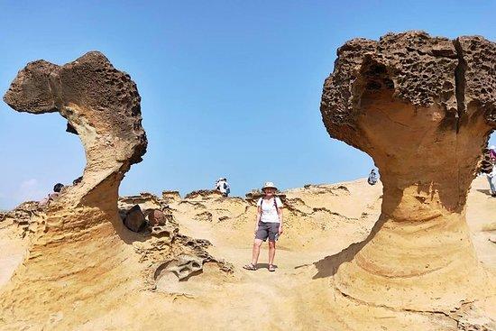 阳明山国家公园和野柳地质公园私人游