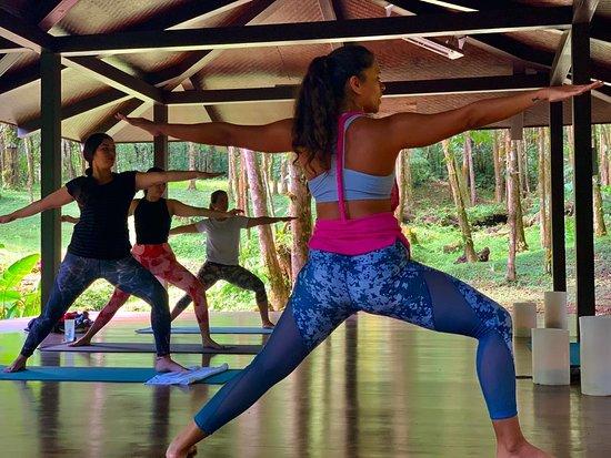 Morning Yoga !