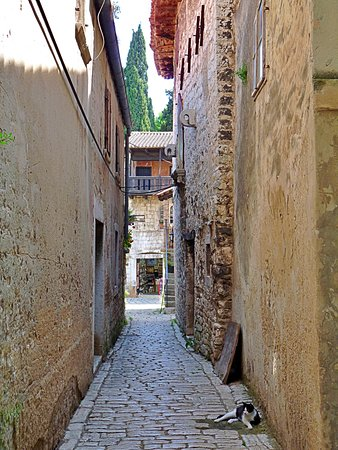 The beautiful town of Poreč 💛
