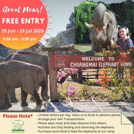 Great News! Free entry from 29 Jun - 29 Jul 2020. from 9.00 am - 3.00 pm.  Please Note: - Limited visitors per day, inbox us to book in advance please - Arrange your own Transportation - Please wear mask and keep distance from others - Activities are Only feeding and observing the elephants - Purchase some food to feed the elephants at our camp  Your continued support to help buy elephant's food is greatly appreciated at this time.🙏🐘♥️
