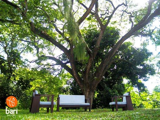 El Vigia, Venezuela: Agrables espacios que fusionan la tranquilidad de la naturaleza en medio de una ubicación céntrica en la ciudad de El Vigía, estado Mérida