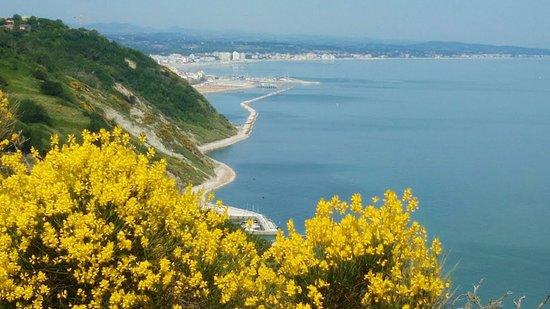 """A due passi da Pesaro e al confine nord delle Marche c'è questa perla dell'Adriatico.Una piccola area protetta, delimitata dalla  statale adriatica e dal mare.Il parco è caratterizzato da pareti a strapiombo, costituite per lo più da falesia viva, che interrompono la morbida costa adriatica del litorale marchigiano.La spiaggia che si distende ai suoi piedi """"esibisce"""" uno splendido tappeto di ghiaie e ciottoli. Tutto attorno una natura rigogliosa e sentieri che conducono a scorci fantastici."""