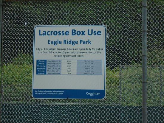 Lacrosse Box