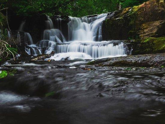 Alsea Falls Monroe, Oregon
