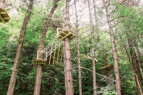 An unusual aerial and fantastic place in a beautiful grove