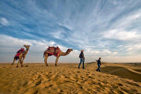 Desert Safari Half - Day Tour In Jodhpur