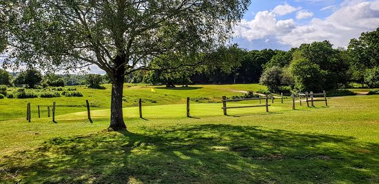"""17th Green on the Manor Course with example of traditional """"deflector"""" fence to keep New Forest ponies off of the greens"""