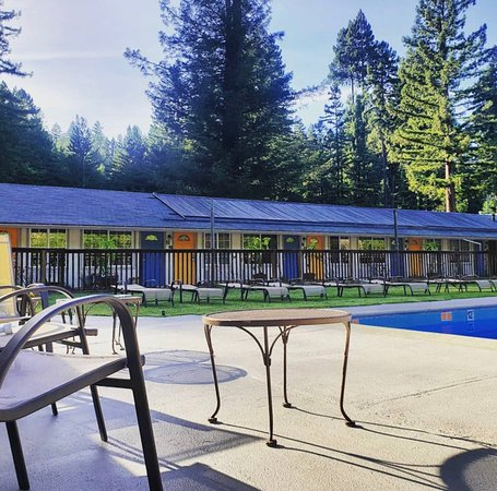 Monte Rio, Kalifornia: Our pool,  patio and lawn space is the perfect are for a family gathering or after a long day of wine tasting in the area.