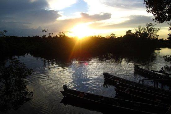 Pampas en Rurrenabaque: 3 días
