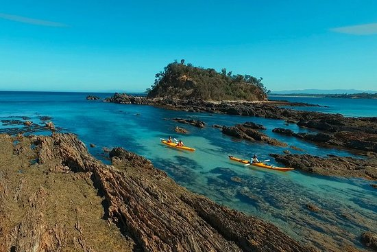 Half Day Sea Kayak Tour from Batemans Bay with Morning Tea and...