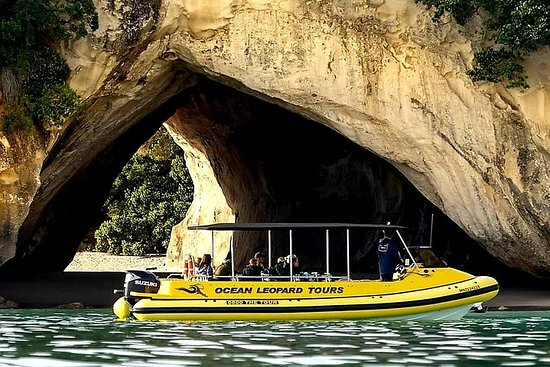 Ocean Leopard Tours - Cathedral Cove Boat Tour