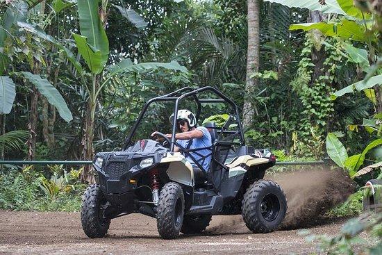 バリ島のマウンテンシリングとジャングルバギー