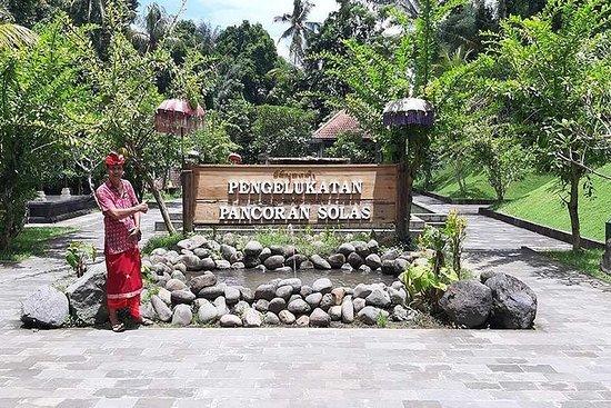 私人旅游:巴厘岛庙宇和Melukat仪式并参观金塔马尼火山