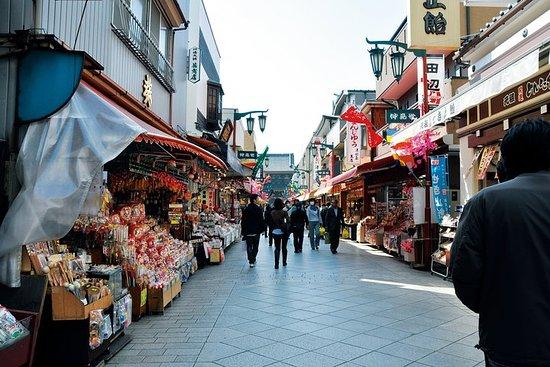 Il meglio del tour a piedi di Kawasaki