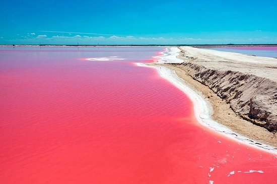 Tour Ek Balam y Las Coloradas