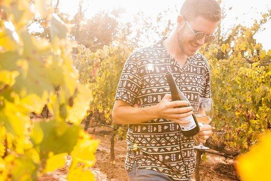 Penedès, Cava & Wine Private Tour ab...