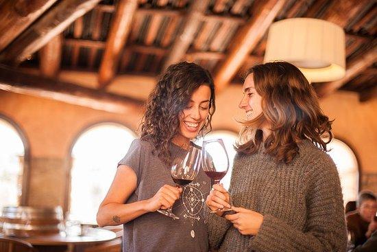 Tour privado del Priorat y el vino...