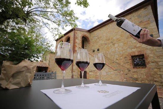 Tuscany Wine Tasting at Chianti