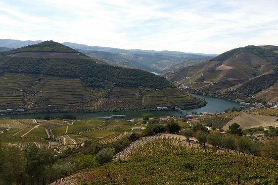 Private Douro Valley Tour from Porto
