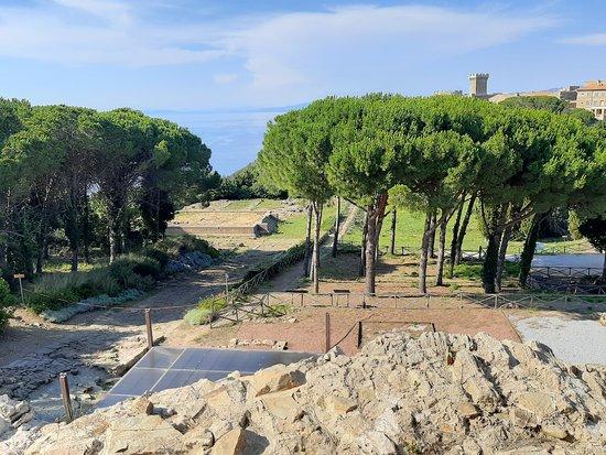 Baratti and Populonia Archeological Park Tour Ticket: strada romana dall'Acropoli