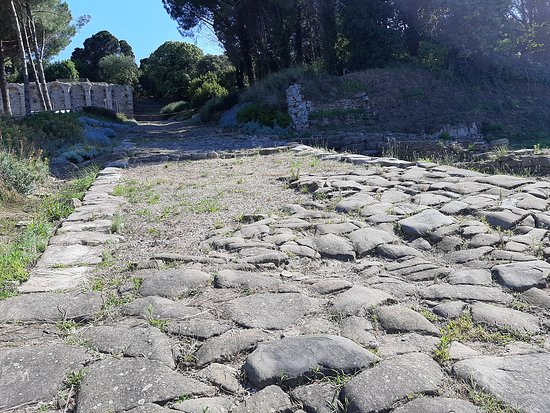 Baratti and Populonia Archeological Park Tour Ticket: strada romana