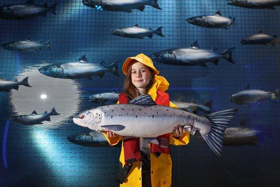 Taste the Atlantic - The Salmon Experience
