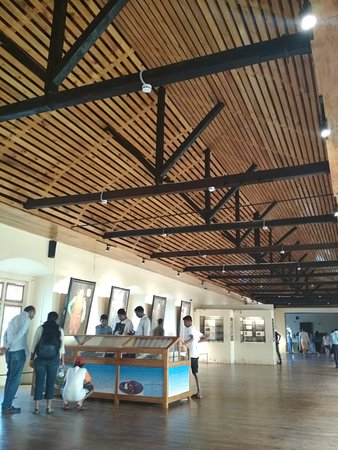 Cola, Индия: The Archaeological Museum in Old Goa