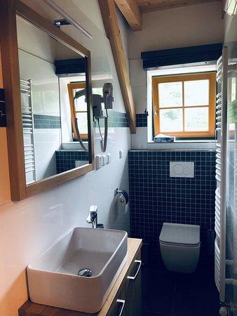 Pokoj 4 - koupelna se sprchovým koutem