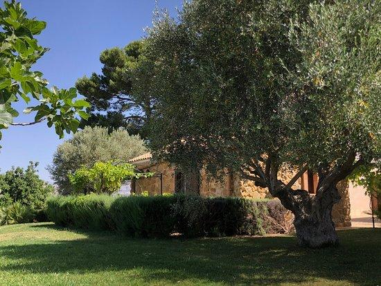 Sant'Angelo Muxaro照片
