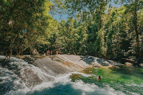 Atherton Tablelands Waterfalls and Rainforest Day Tour Departing...