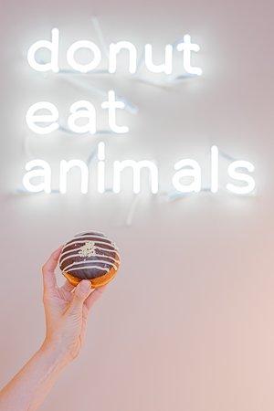 donut eat animals