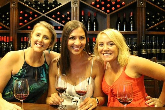 The Temecula Wine and Vine Tour from...