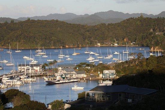 Opua Marina views
