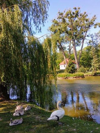 Kaunas Botanical Garden