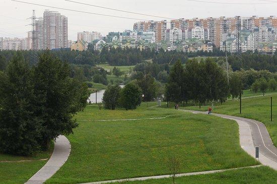 Пешеходные и вело дорожки в парке