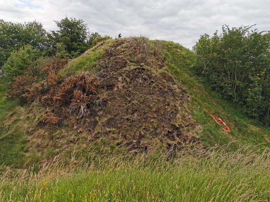 Harryville Motte and Bailey