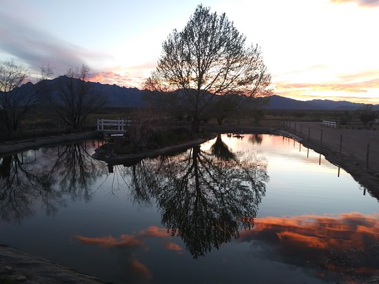 Rodeo, NM: It was a gorgeous, isolated view when the pandemic hit this winter. Hope everyone is still well.