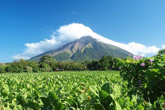 Visite à pied romantique à Matagalpa