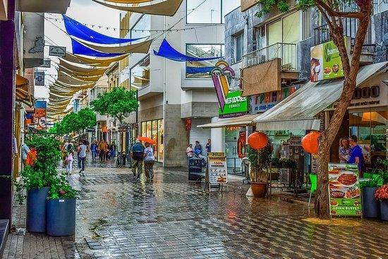 Nicosie Shopping au départ de Paphos