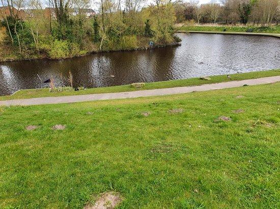 Mill Dam Park