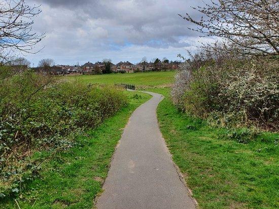 Millbrook Millennium Green