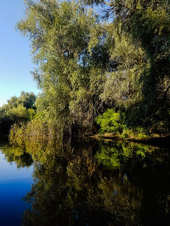 Murighiol, Romania: Mirror on the water