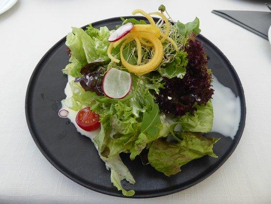 Steckborn, Švajcarska: Blattsalat, den man so nicht hätte servieren dürfen. Schön angerichtet, aber was ist mit der Sauce!