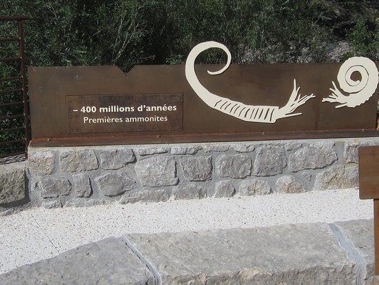 La Dalle à Ammonites. Vue 7. Nouvel Accès et Nouvelle Passerelle. La Signalétique sera Fixée Fin Juillet et Début Août 2020. Les Isnards. Digne Les Bains. 4 Juillet 2020.