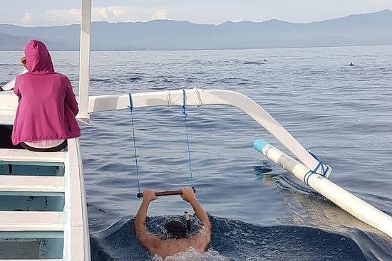 Lovina ticket Dolphin & Snorkling