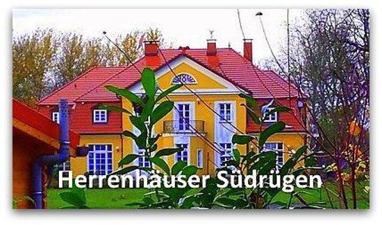 """Ganzjährig buchbar ist die """"Südrügen-Tour. Sie startet um 8:45 Uhr in Glowe, Rügen Radio 6. Die Abholung ist möglich. Der Preis pro Person beträgt 60 Euro. Maximal 7 Personen können an der Kleinbustour teilnehmen. Anmeldung unter www.ruegentouren.de"""